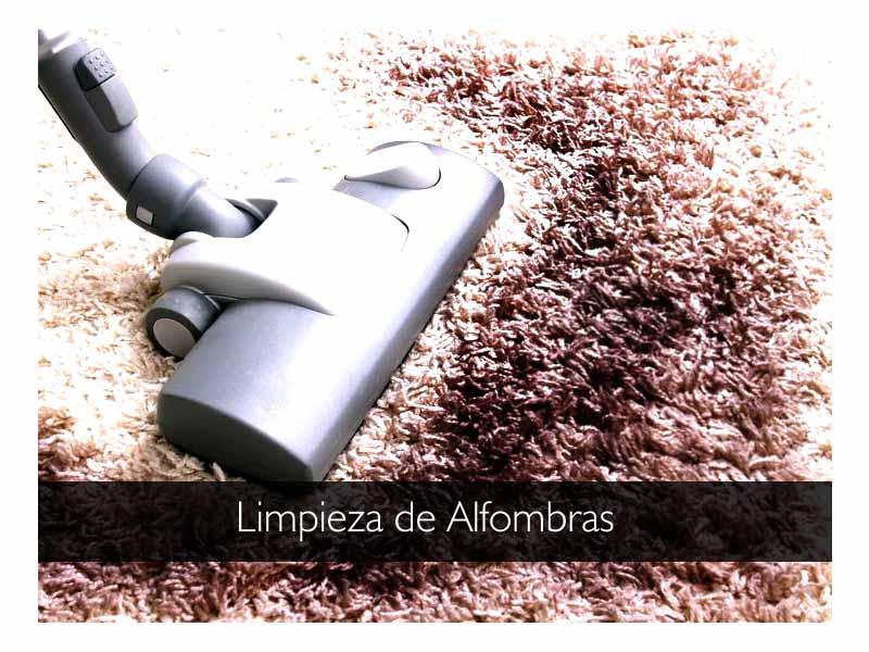 Jetcleaners limpieza de alfombras - Limpieza de alfombras en casa ...